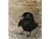 Wood art, baby raven, blackbird, wooden art print