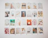 Set of 4 Note Cards, Polaroid Style Photos, Blank Note Cards, Photo Note Cards, Thank You Cards