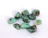 CHRYSOPRASE - 5 Medium/Large Tumbled Stones