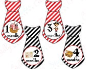 Boy Monthly Baby Stickers, 1 to 12 Months, Monthly Bodysuit Stickers, Baby Age Stickers, Pirate Ties