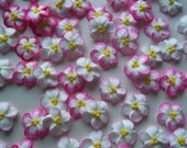 Pink-tipped white royal icing flowers -- Handmade cake decorations cupcake toppers edible (24 pieces)