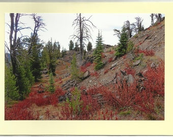 Beauty in the Fall, ELKHORN MOUNTAINS - Original Outdoor Scenery / Local Artist Digital Photo - Blank Photo Card Twin Fold Design - In Stock