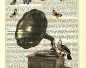 Dictionary Art Print Vintage Upcycled Book Page Art Poster Gramophone, Bird & Butterflies Print