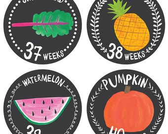 Pregnancy Stickers- Growing Garden- Belly Bump Stickers- Weekly Pregnancy Stickers- Belly Growth Stickers- Pregnancy Photo Props