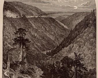 1889 ALLEGRIPPUS Pennsylvania Print  Antique Print Plaindealing 766