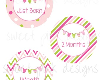 Monthly Baby Stickers, Milestone Stickers, Month Stickers, Baby Month Stickers, Girl Bunting, Girl month Stickers, Pink, Baby Girl