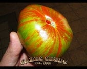 Berkeley Tie Dye Heirloom Tomato Seeds