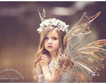 Custom order for Iridescent Fairy wings