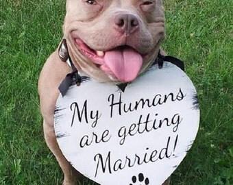 Dog Wedding Sign Etsy