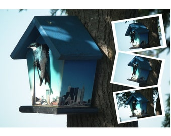 Toronto Sky Line Birdhouse