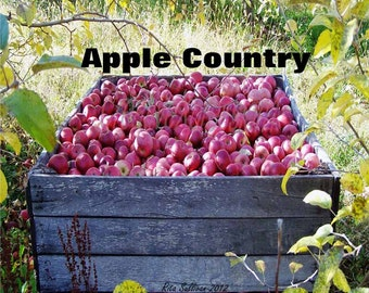 Apple Country1 8 X 10 Instant Digital Download
