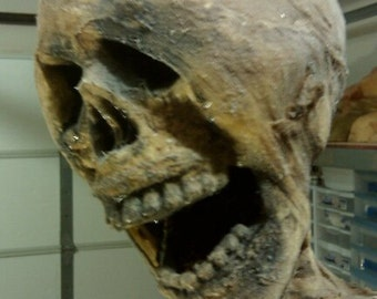 Mummy/Corpse Prop Fullsize
