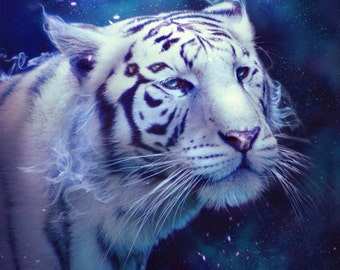 Fantasy Home Decor - White Tiger Poster - Original Illustration - Nebula Galaxy Poster - Animal Painting - White Tiger - Blue and Purple