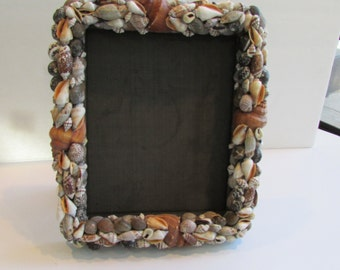 Sea Shell Picture Frame 8 x 10
