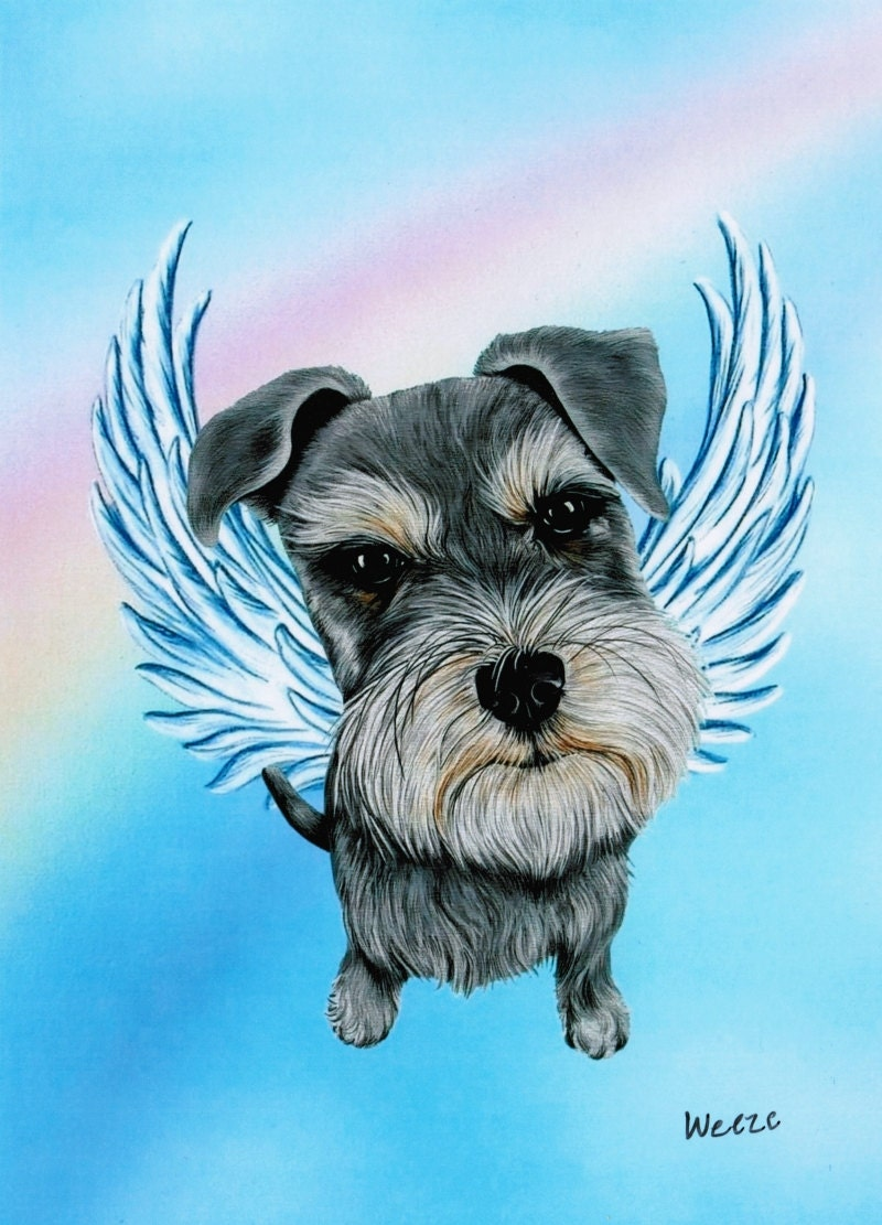 Schnauzer Schnauzer Memorial Schnauzer Angel By Artbyweeze