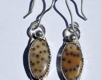 Petrified Palm Earrings -Sterling Silver Earrings - Dangle Earrings - Fossil Earrings - Gemstone Earrings - Silver Gemstone Earrings