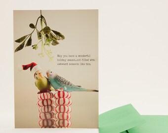 Awkward Mistletoe Moments: Funny Christmas Card with Budgies