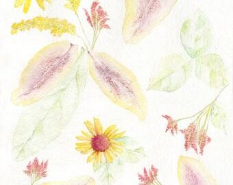 Art Print of Original Watercolor-Dried Flowers
