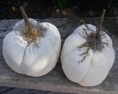 Pumpkin White Forever, Thanksgiving,  Everlasting Gourd, Harvest Decoration, Cloth Painted Pumpkin