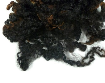 1oz,Prime Wensleydale wool locks ,First clip, Hand-picked Dark Brown / black with reddish accents(undyed)