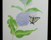 Milkweed with Tiger Swallowtail Butterfly Watercolor Painting Notecard - Blank Inside - Card - Wildflowers