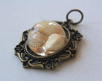 Tiny shells inside dome steampunk bezel pendant