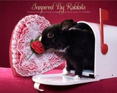 Bunny Valentines Card Customized or Blank choose notecard or greeting card size