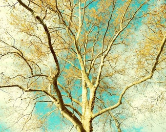 Tree In Spring Photograph - Nature Art -  Dark, Medium Turquoise Sky - Tree and Sky Art - Wall Decor - Nature Photograph