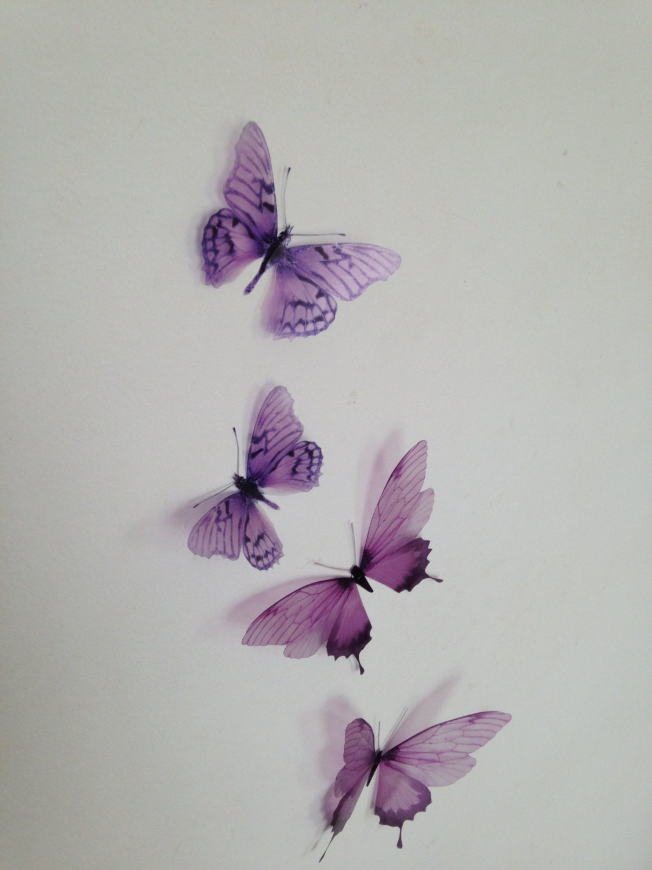 3d Butterfly Wall Art Bedrooms