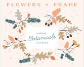 Botanicals & Frame - PNG Files - Floral - Digital Clip Art Set