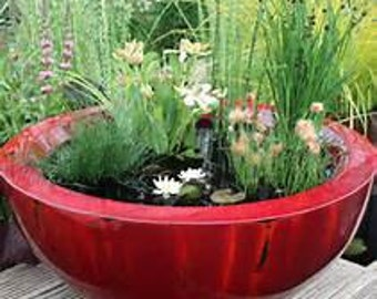 Pond Pot Recycled Fabric Container Gardening Durable Pot Water Pond Post Consumer Waste Organic Container Hydroponic Pot Fast Growing Roots