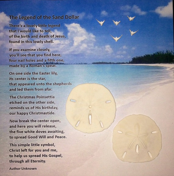 picture relating to Legend of the Sand Dollar Poem Printable identify Cost-free Printable Sand Greenback Poem Printable Sand Revenue