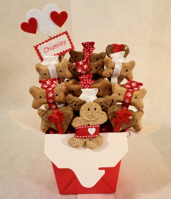 Dog biscuit treat dog gift basket unique dog by treatworthypet for Unusual get well gifts