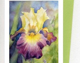 Iris Card / Print Art , yellow Purple Original Watercolor Art Print