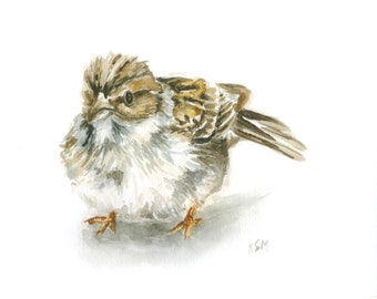 Baby Bird *Limited Edition* Giclee Print