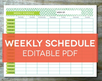 hourly schedule template pdf