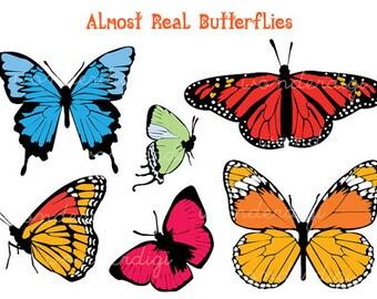 Butterflies Clip Art  - Butterfly Clipart