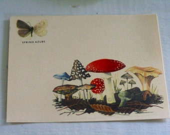 Any Occasion Vintage Collage Postcards