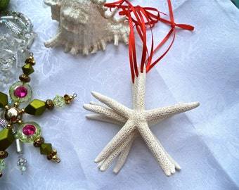 Beach Christmas Ornament.    White starfish w/ delicate red ribbon or choose your own ribbon color. Simple. Sophisticated. (6)