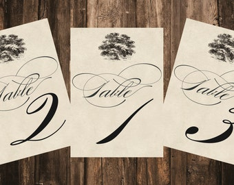 Vintage Tree Table Number // Printed Table Number 5x7 // Wedding Decor, Vintage Wedding, Rustic Wedding Decor