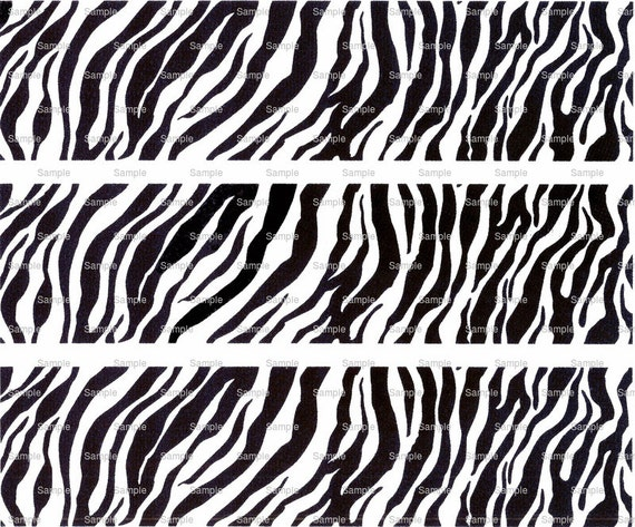 Zebra Birthday - Designer Strips - Edible Cake Side Toppers- Decorate The Sides of Your Cake! - D673