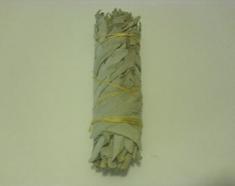 "California White Sage Smudge Incense 5""-6""; Bundle (1 pc)"