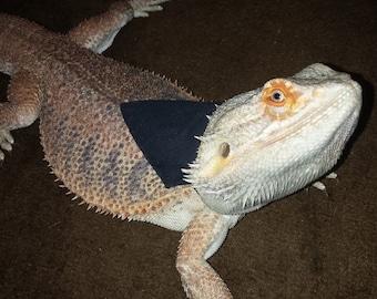 Dragon Collar - Adjustable with Interchangeable Bandanna