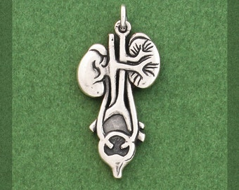 Anatomical Kidney/Bladder Charm