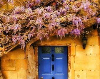 Blue Door with  Purple Wisteria Vine