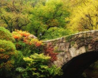Central Park Gapstow Bridge, NYC in Autumn