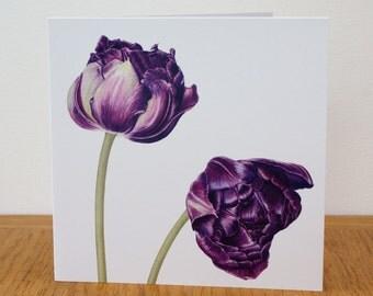 Tulip 'Black Hero' art card - blank inside