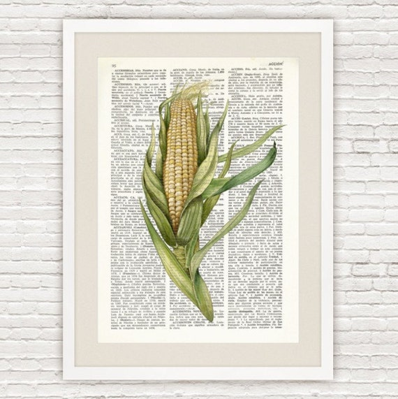 Kitchen Dictionary: Dictionary Art Print CORN Vintage Dictionary Page Kitchen
