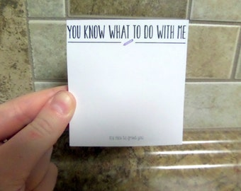 "Funny Snarky Post It Notes, Cheap Holiday Gift, ""You Know What To Do With Me"", Sticky Notes, Post Its"
