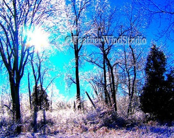 Ice Storm Winter Landscape Photograph | Sparkling Trees | Glistening Thick Ice | Sunny Blue Sky | Winter Trees | Icy Sunset | Blue Art Print